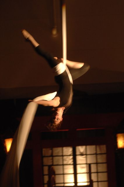 Aerial Fabric Acrobatics Show for Homecoming
