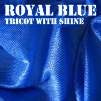 Royal Blue Shiny Fabric