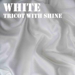 White Shiny Fabric