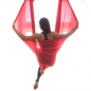 Aerial Yoga Hammock (Basic)